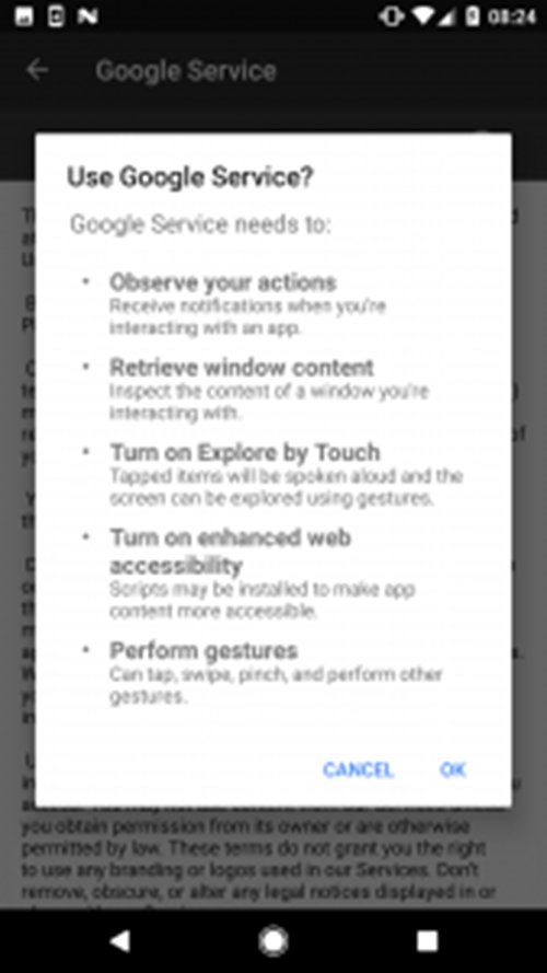 "Figure 5 – Permissions required for the activation of ""Google Service"""